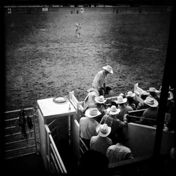 Cheyenne Rodeo 2011